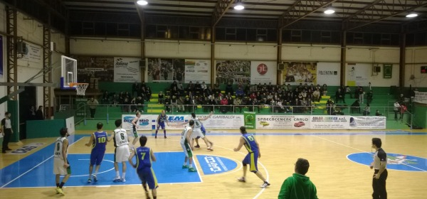 Magic Basket Chieti